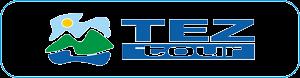 тез-лого