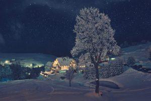 zieleniec-ski-arena-noc-1024x681
